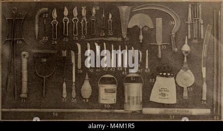Barnard's seeds, bulbs, shrubs 1919 (1919) (20166205388) - Stock Photo