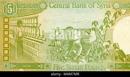 Syria Five 5 Pound Bank Note - Stock Photo