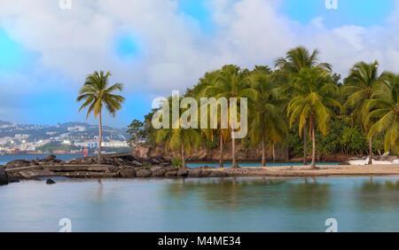 The Caribbean beach , Martinique island. - Stock Photo
