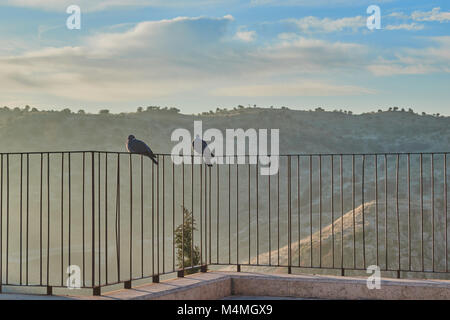 Couple of pigeons perched on railing of a viewpoint at sunrise in Toledo, Spain - Stock Photo