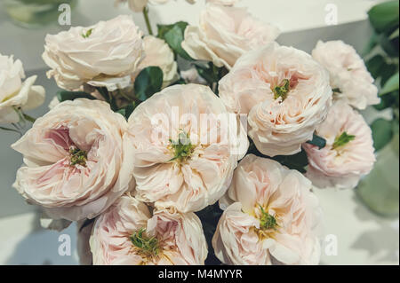 White roses with green middle is an original selection of a large bouquet on sale in the flower market. Modern elite - Stock Photo