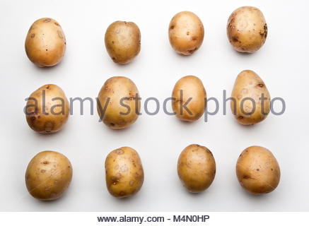 Potato Background studio quality - Stock Photo