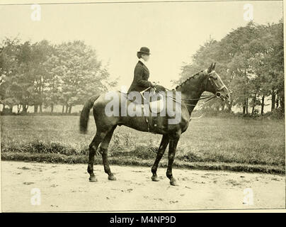 Annals of the Billesdon hunt (Mr. Fernie's) 1856-1913 - notable runs and incidents of the chase, prominent members, - Stock Photo