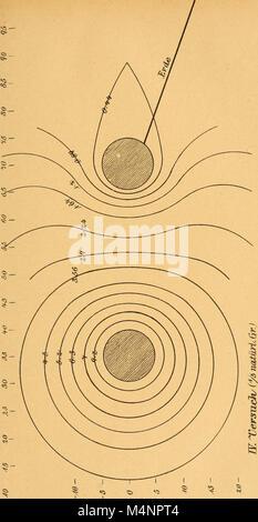 Berichte des Naturwissenschaftlich-medizinischen Vereins in Innsbruck (1891) (19744028964) - Stock Photo