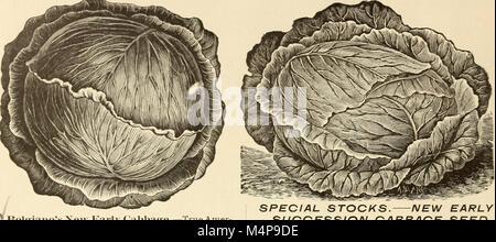 Bolgiano's 1902 catalogue - tested seeds for the garden and farm (1902) (14582645237)