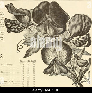Bolgiano's 1902 catalogue - tested seeds for the garden and farm (1902) (14765991501)