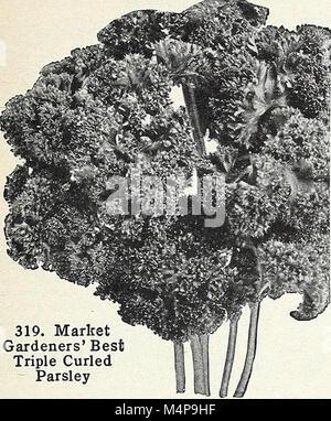 Bolgiano's capitol city seeds - 1963 (1963) (20364255916) - Stock Photo