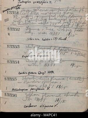 Book no. 10, H.A. Allard, field collection specimen no. 13000-14343 (1945) (20211966878) - Stock Photo