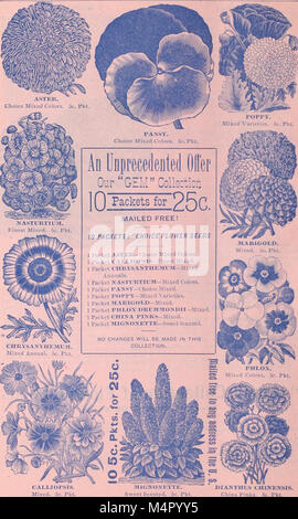 Annual catalogue - seeds, bulbs, plants, implements, etc (1895) (18425283271) - Stock Photo