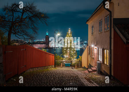 Stockholm city center with historic town hall and decorated Christmas tree in the old town district during blue - Stock Photo