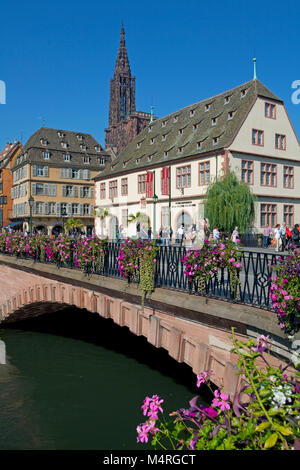 Flower decorated Pont Corbeau with view on the Cathedral of Strasbourg, Alsace, Bas-Rhin, France, Europe - Stock Photo