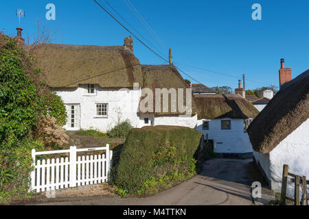 thatched cottages in helford village, cornwall, england, britain, uk. - Stock Photo