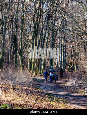 Berlin, Volkspark Schönholzer Heide, Public park with people walking along wooded nature trail under bare trees - Stock Photo