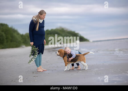 Most Inspiring Sea Beagle Adorable Dog - girl-and-cute-dog-beagle-by-the-sea-m4w1d0  You Should Have_208146  .jpg