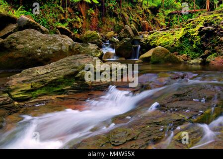 Small waterfall, Curug Pangeran, Mount Salak, Bogor, Indonesia - Stock Photo