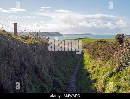 Beautiful coastal landscape showing a path towards the sea. - Stock Photo