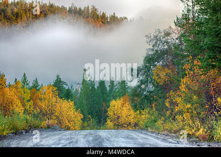 Scenic route, car trip. Dirt road through autumn woods, fog in hollow - Stock Photo
