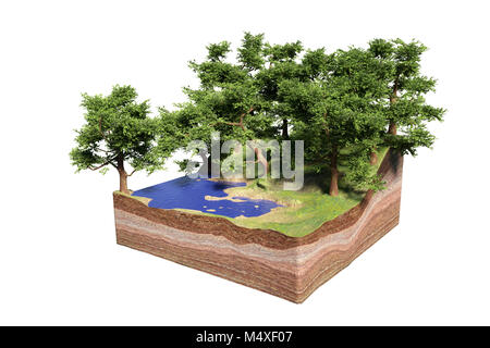 cross section of ground with lake, forest and beach, idyllic nature with trees cube concept (3d illustration, isolated - Stock Photo