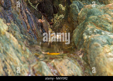 Small clean water lake between a rock - Stock Photo