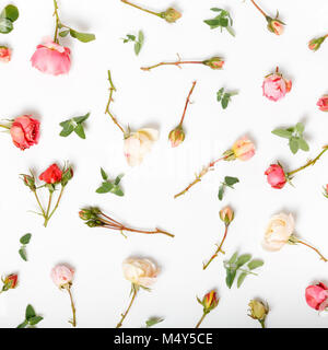 Festive flower English rose composition on the white background. Overhead top view, flat lay. Copy space. Birthday, - Stock Photo