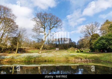 Reflection of the Exedra folly and grounds in the Fish Pond in Painswick Rococo Garden, Painswick, and carpet of - Stock Photo