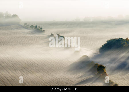 Morning fog on a new harvested field - Stock Photo