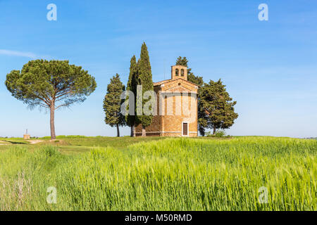 Chapel on a hill in a cornfield - Stock Photo
