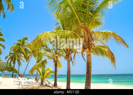 Beautiful beach with palms, sunbeds, blue sky and turquoise water, Dominican Republic, Samana, little Island in - Stock Photo