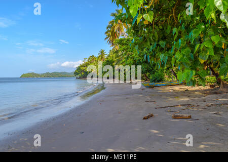 Palms and an old boat, sandy beach, Dominican Republic, caribbean sea - Stock Photo
