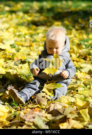 Baby boy with yellow autumn maple leaf - Stock Photo