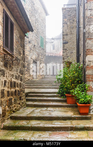 Staircase in a alley with green plants in pots - Stock Photo