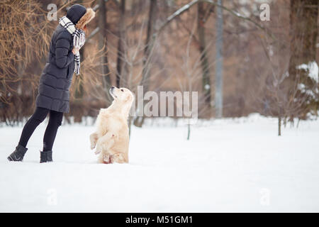 Picture of young woman in black jacket training dog in snowy park - Stock Photo