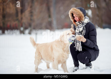 Photo of smiling woman squatting next to labrador with toy in teeth in winter - Stock Photo