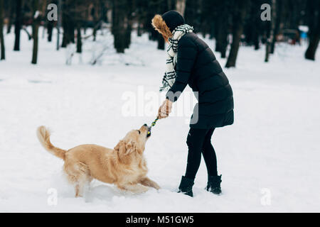 Picture of woman playing with labrador in winter park - Stock Photo