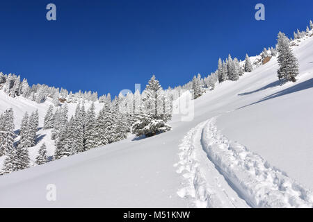 Deeply snow-covered landscape in the mountains with coniferous forests and ski tracks at a beautiful winter day. - Stock Photo