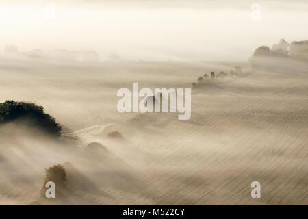 Morning fog with sun rays across the field - Stock Photo