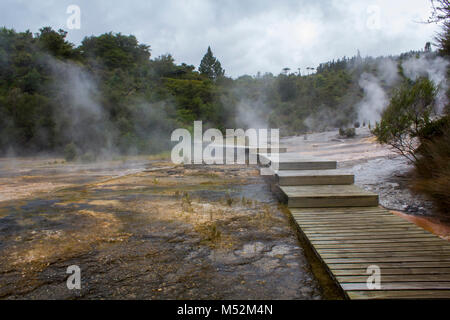 Silica Terraces , Orakei Korako Geyserland, Geothermal Park, New Zealand - Stock Photo