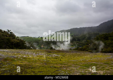 Geothermal landscape with hot springs and steam from geysers, New Zealand - Stock Photo