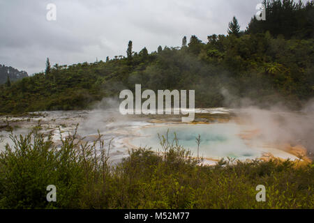 Steam rising from colorful terrace on geothermal landscape - Stock Photo