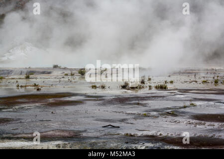 Geothermal activity, volcanic area and steam rising from terrace - Stock Photo