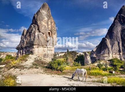 White horse near tufa geological formation with windows called fairy chimneys in Cappadocia, Turkey - Stock Photo