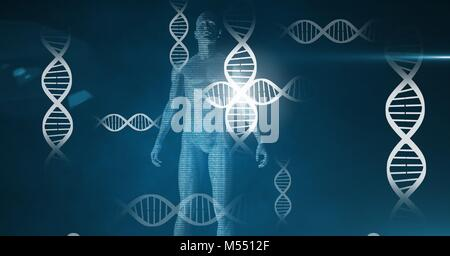 Human genetic science biology interface - Stock Photo