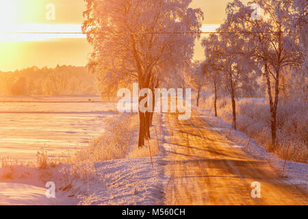 Country road in sunset light in a winter landscape - Stock Photo