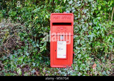 red letter collection box of the great britain post office in a hedge startford uopn avon - Stock Photo