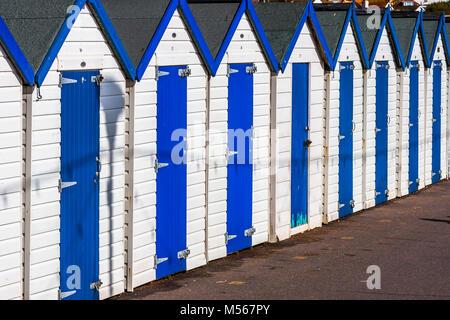 A row of beach huts on the Devon coast of England. - Stock Photo