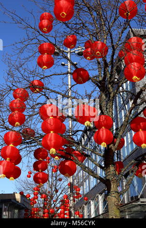 Colourful Chinese Lanterns suspended from tree in Liverpool to mark the beginning of Chinese New Year. - Stock Photo