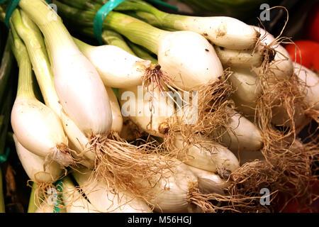 spring onions - Mercado de Tirana Market Hall - Stock Photo