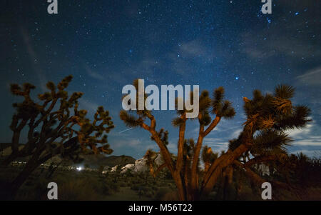 Rock formations and Joshua Trees at night with stars in the sky at Joshua Tree National Park on February 17, 2018 - Stock Photo