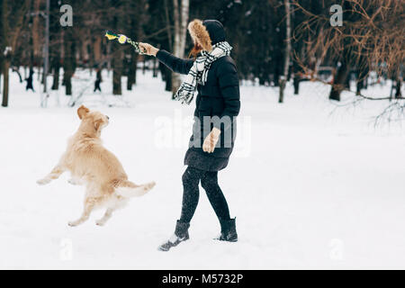 Picture of woman playing with retriever in winter - Stock Photo