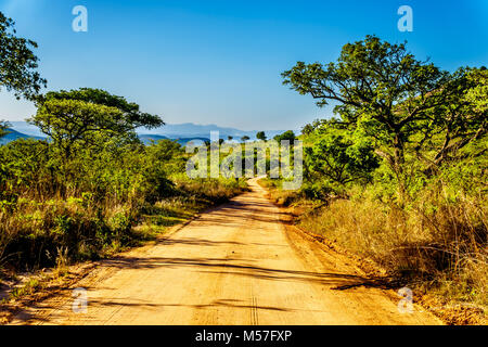 One of the many dirt roads through the wilderness of Kruger National Park in South Africa - Stock Photo
